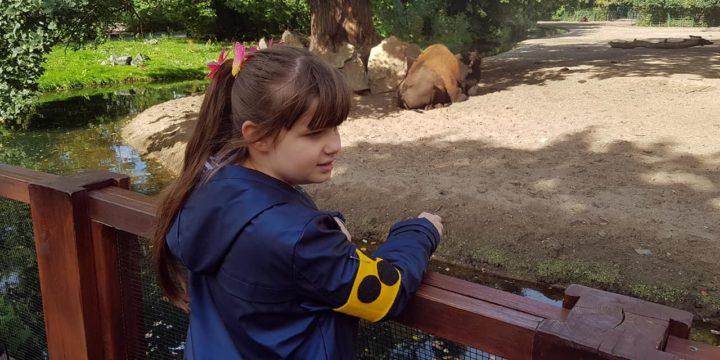 Blindenführung im Tierpark Berlin